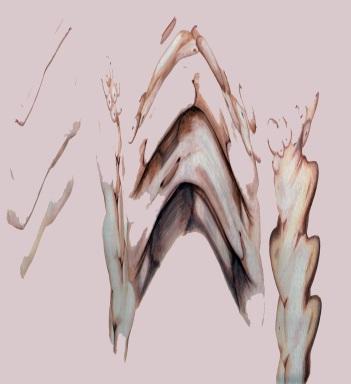 The Three Graces, digital print, 60x65cm